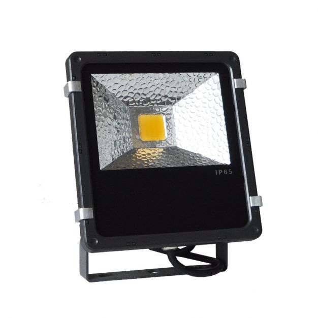 30W LED-verstraler (stockopruiming)