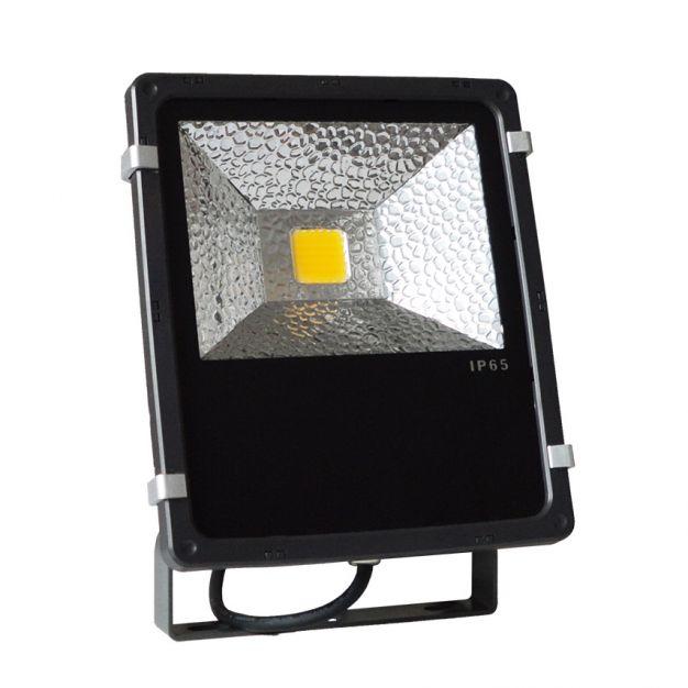 50W LED-verstraler (stockopruiming)