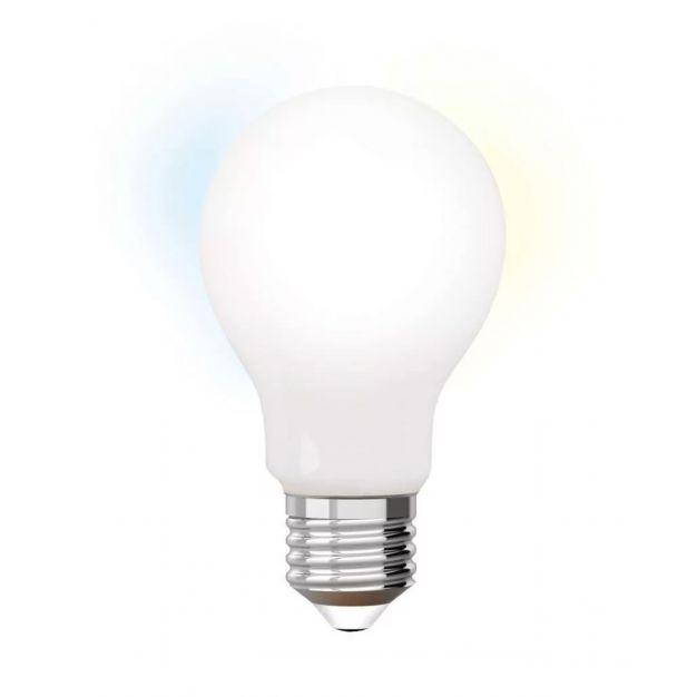 iDual LED-lamp zonder afstandsbediening - Ø 6 x 10,8 cm - E27 - 9W dimbaar - 2200K tot 6500K - melkglas